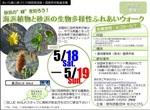 表浜ブルーウォーク2013ふれあいウォークチラシ.jpg